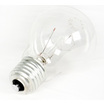 110 Volt ES Light Bulb Lamp
