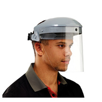 KeepSAFE Spare Faceshield Visor