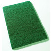 CleanWorks Coloured Scouring Pads - Blue