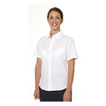 Double Two Ladies Polycotton Short Sleeve Oxford Shirt