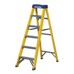 Werner Fibreglass Stepladder