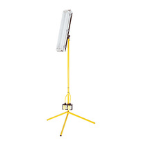 Low Energy Fixed Stand 2' Fluorescent Site Light